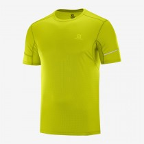 SALOMON - AGILE SS TEE M-CITRONELLE - MEN