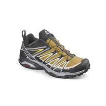 SALOMON - X ULTRA 3 GTX ARROWWOOD/BK - MEN